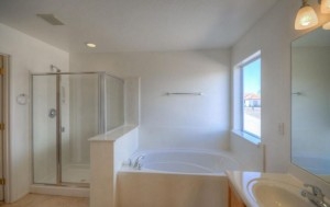 master bath-5255125